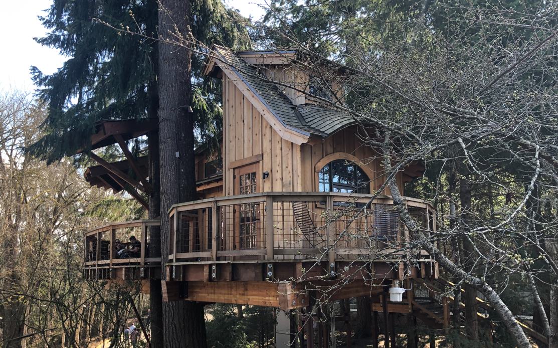 Microsoft-Treehouse